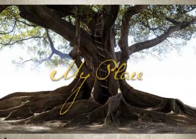 My Place – Companion Website
